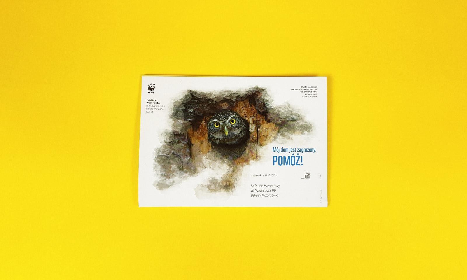 Plakat sóweczka
